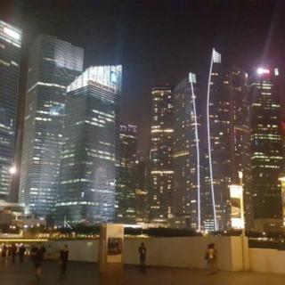 singapore customs consultants