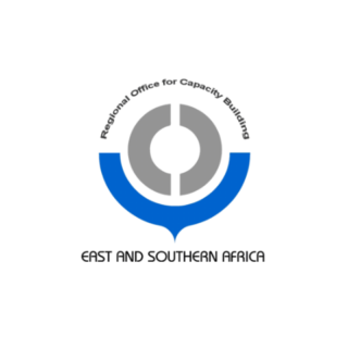 southern africa customs consultants