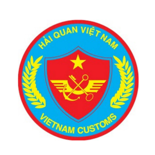vietnam customs consultants
